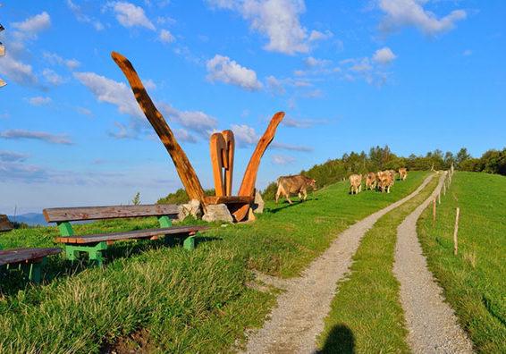 turistična kmetija Široko